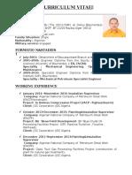 CV Painting Insulation