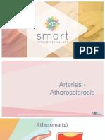Arteries Atherothrombosis