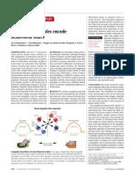amygdala behavioral states.pdf