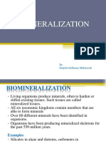 bbiomineralization-180222152429