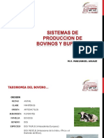 Sistemas de producción de bovinos y búfalos