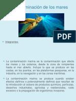 Contaminacion Del Mar