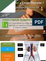 14_urinario.pptx
