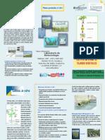 CULTIVO IN VITRO.pdf