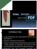 Renal Tubular Acidosis Slideshare