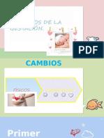 PROCESOS DE LA GESTACIÓN (1).pptx