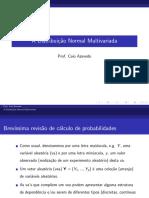 aula_Intro_DNM.pdf