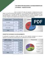 ANALISIS DE VISITAS.docx