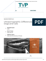 Ultrasonographic Differences Between Dogs and Cats _ Today's Veterinary Practice.pdf