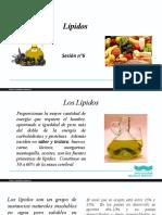 Sesion_n_6_Lipidos