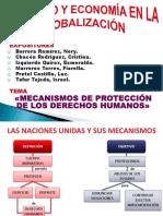 Mecanismos de Protección de Los Dd.hh.