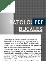 Patologias Bucales Expo de Hoy