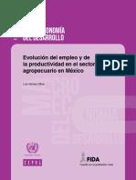 Evolucion Del Empleo y Productividad