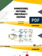 2. Aminoácidos, Péptidos, Proteínas y Enzimas_ 2018p2