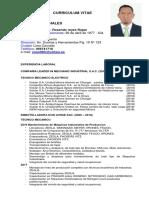 CV PARA MINA.pdf