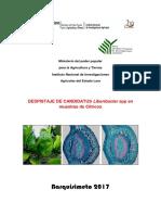 Triptico HLB.pdf