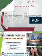 _CLASE MUSLO Y REGION POLPLITEA DR AGUIRRE (1).pdf