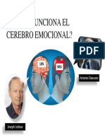 cerebro emocional 1.pptx