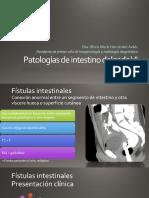 Patología de intestino delgado VI