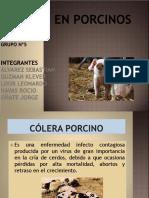 Sanidad en Porcinos