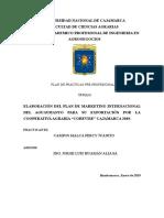 Plan de Prácticas COHEVISE.docx