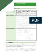 Estructura de Idea de Proyect