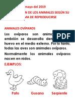 Viviparos y Oviparos Clase