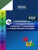 Lineamientos_IEPC.pdf