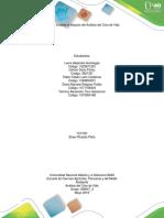 358047_2 -Etapa 5_Evaluar el Impacto del Análisis del Ciclo de Vida (3).docx
