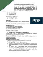 Csst Acta de Reunión Del 10 de Agosto 2015
