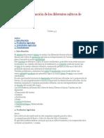 Costos de producción de los diferentes cultivos de tumbes.docx