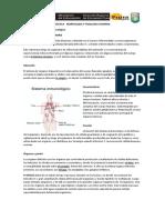 ACTIVIDAD El Sistema Inmunológico