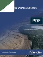 12. Pablo Gallardo - Diseño de canales abiertos.pdf