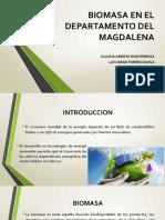 Biomasa en El Departamento Del Magdalena