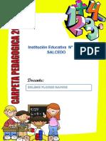 Carpeta Pedagogica de Primaria 2018