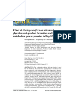 Effect of Moringa Oleifera on Advanced Glycation End-product Formation and Lipid Metabolism Gene Expression in HepG2 Cells