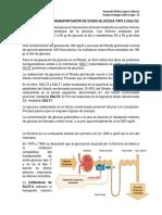 Inhibidores de Sglt-2