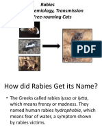 rabies in animals