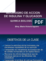insulina-glucagon 2007