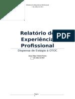 Relatório Profissional.docx