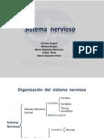 S. Nervioso.pptx