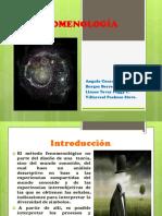 fenomenologia (5)
