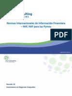 15 Seccion 15 - Inversiones en Negocios Conjuntos TCS 24-10-2014.pptx