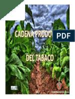 Cadena Productiva de Tabaco en El Huila 2011 (1)