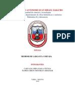 Práctica 3. Medidor de Garganta Cortada.