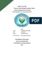 RI PKN ANDINI.docx