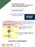 Factores Físico Químicos en La Producción Del Biogás