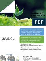 Latencia y germinación