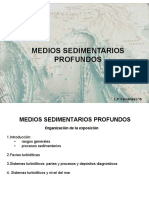 Medios Profundos 3 Sistemas Turbiditicos