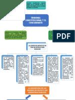 TRIBUNAL CONSTITUCIONAL Y EL CONCUBINATO